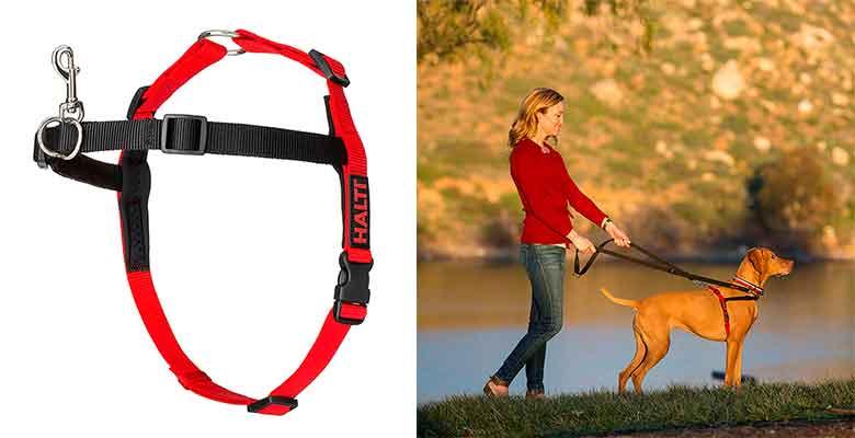 Arnés de adiestramiento y anti-tirones para perros - Halti