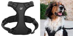 Arnés de tipo chaleco para perros - Happilax