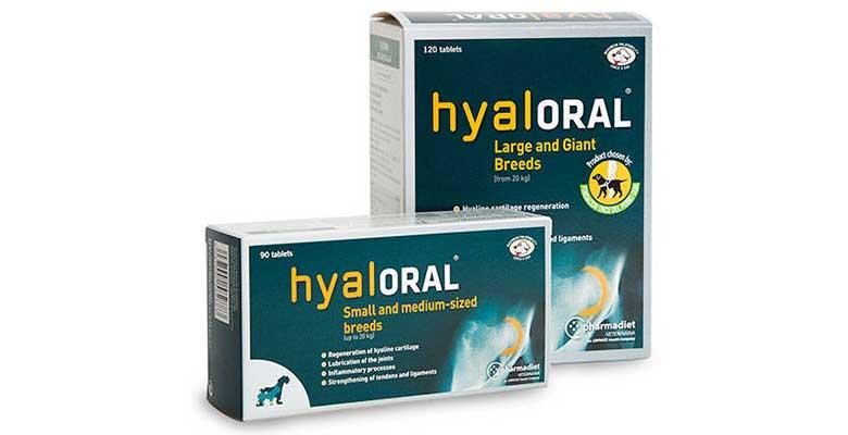 Hyaloral: Condroprotector para perros