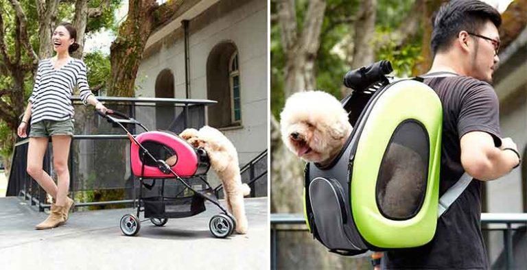 Híbrido entre carrito, transportín y mochila con ruedas para perros y gatos - Ibiyaya