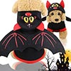 Disfraz de murciélago para perro - Idepet