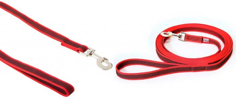 Correa de nylon para perros - Julius-K9