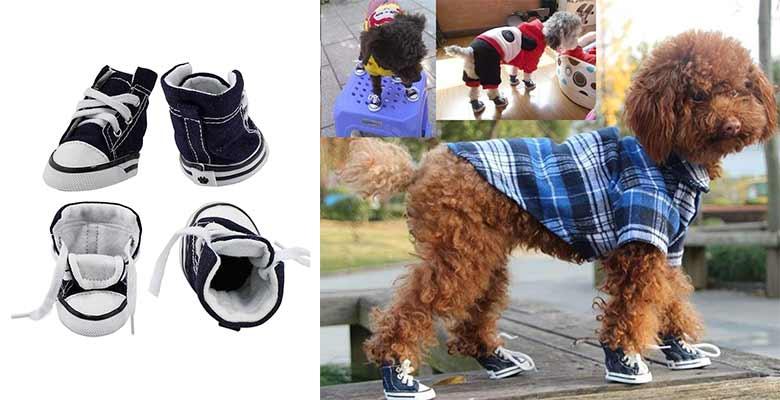 """Patucos para perros estilo """"Converse"""" - KEESIN"""