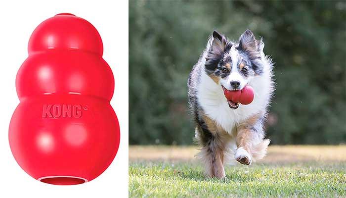 Kong Classic Rojo para perros adultos