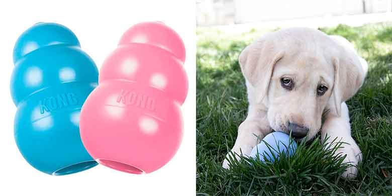 Kong Puppy: juguete y mordedor perfecto para cachorros