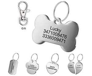 Placa identificativa de acero inoxidable para perros y gatos - LYL