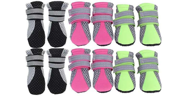 Zapatos de verano para perros - Legendog