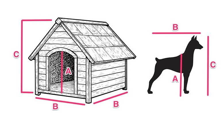 Medidas ideales para casetas de perros