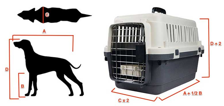 Cómo medir a tu perro o gato para comprar el transportín adecuado para él