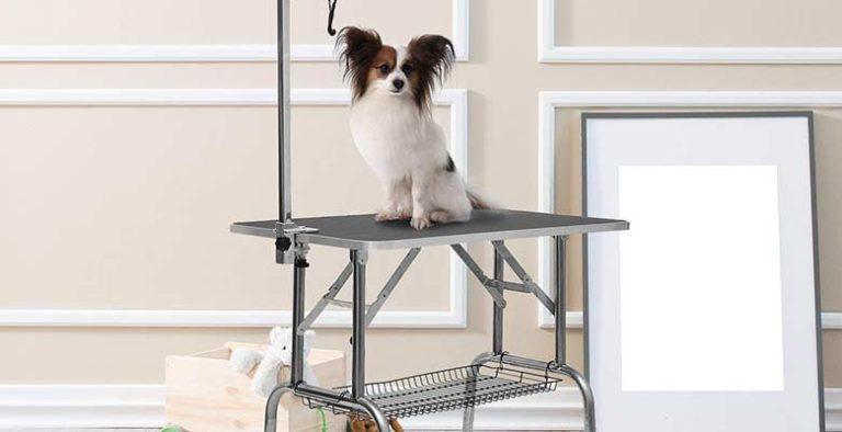 Mesas de peluquería canina