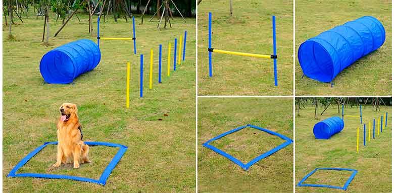 Set de entrenamiento agility para perros - PawHut