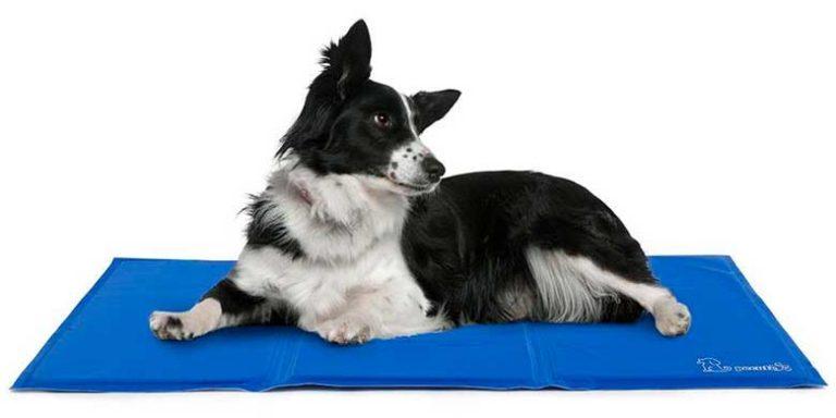 Cama fría de verano para perros, tipo manta refrigerante - Navaris