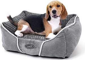 Cama para perros barata y de varios tamaños - Pecute