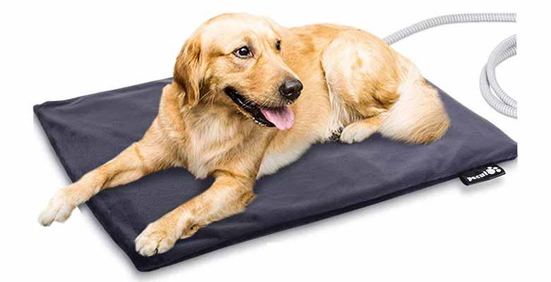 Manta eléctrica para perros y gatos - Pecute