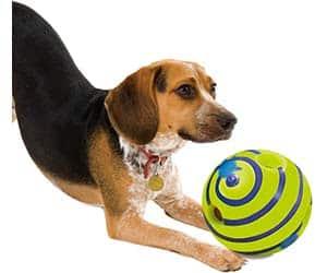 Pelota con sonidos para perros ciegos - Wobble Wag Giggle