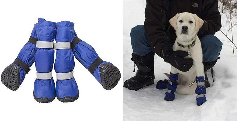 Botas de agua y nieve para perros (impermeables) - PetPhindU