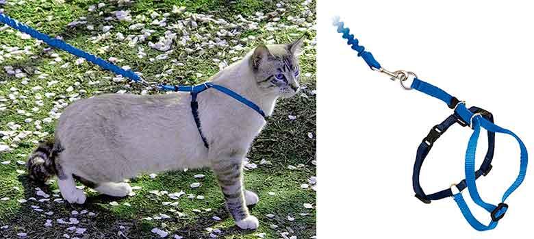 Arnés para gatos cómodo y ligero con correa elástica - PetSafe Easy Walk