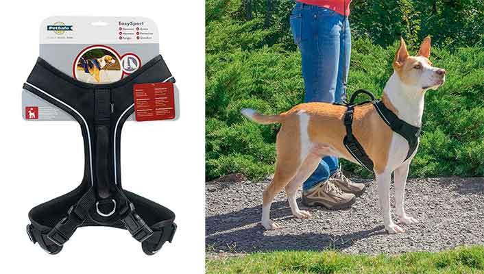 """Arnés en """"Y"""" para perros - Petsafe EasySport"""