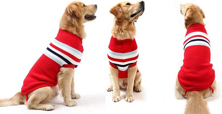 Jersey para perros medianos y grandes - Petyoung