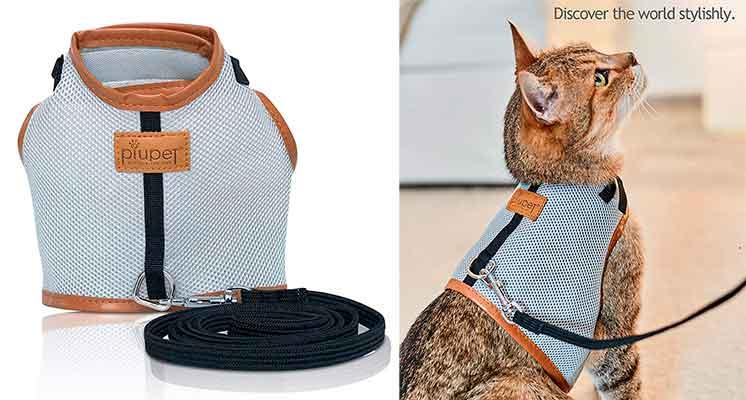 Arnés para gatos muy elegante - PiuPet