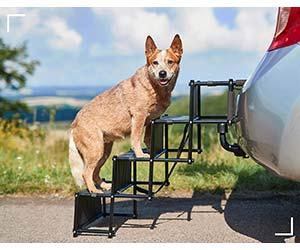 Escalera plegable para ayudar al perro a subir al coche - PiuPet