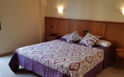 Reina Isabel hotel que admite perros en Lleida