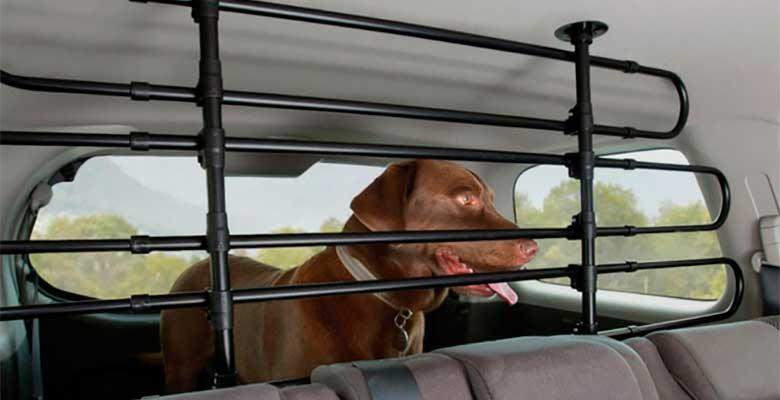 Rejas, barreras y separadores para llevar al perro en el coche