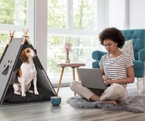 Tipi para perros - Relaxdays