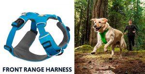 Arnés de calidad premium para perros - Ruffwear Front Range