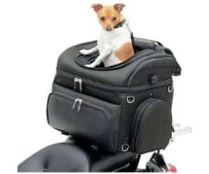 Bolso para llevar al perro en moto - Saddlemen Pet Voyager