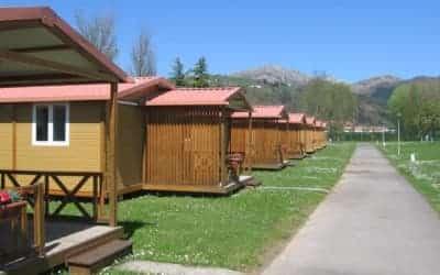 Sella camping en Asturias con perro