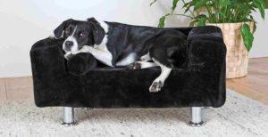 Sillones y sofás para perros