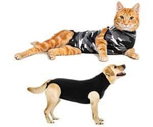 La mejor alternativa al collar isabelino: traje de recuperación para perros y gatos - Suitical