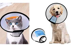 Collar isabelino transparente y ajustable con velcro para gatos y perros - Supet