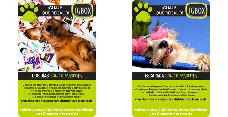 Cajas de experiencias para perros y humanos - TGBox
