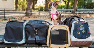 Transportines para perros y gatos