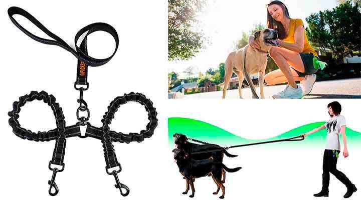 Correa doble para perros - Pecute