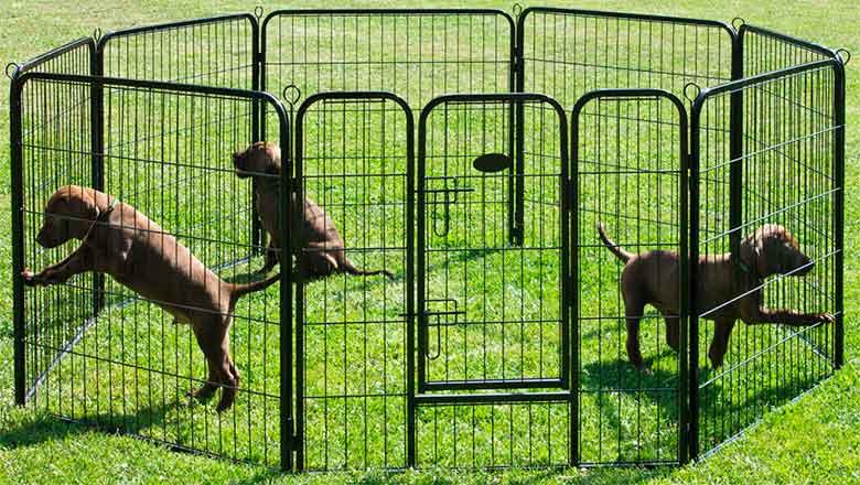 Vallas y parques para perros