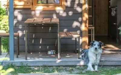 Verneda Mountain Resort camping que admite mascotas en Pirineo Catalán - Valle de Arán