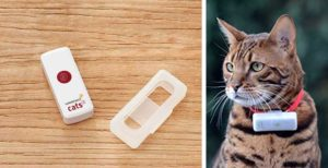 Weenect for Cats Localizador GPS para gatos