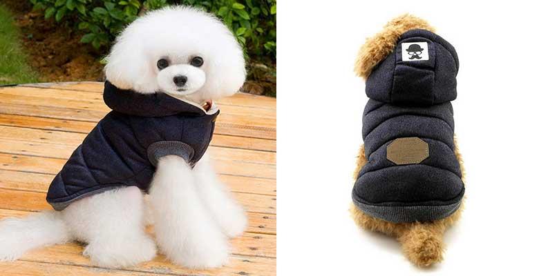 Chaqueta de invierno con capucha para perros pequeños - Zunea
