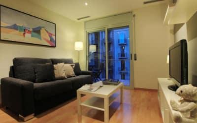 Alguera Apartments Industria - Apartamentos pet friendly en Barcelona
