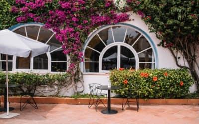 Cesar hotel que admite mascotas en Barcelona