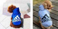 Sudadera para perros con estilo deportivo - Ducomi Adidog