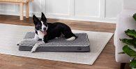 Colchón para perros barato y fabricado con espuma ergonómica - AmazonBasics