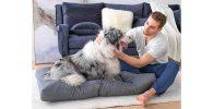 El cojín para perros más popular del mercado - Bedsure