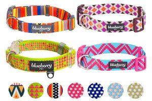 Collares originales para perros - Blueberry Pet