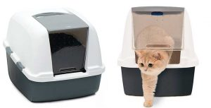 Arenero cubierto para gatos grandes o para varios gatos - Catit Magic Blue Jumbo