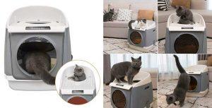 Arenero para gatos con entrada doble - Dadypet