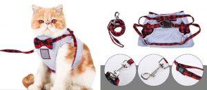 Collar y arnés original para gatos - Decdeal